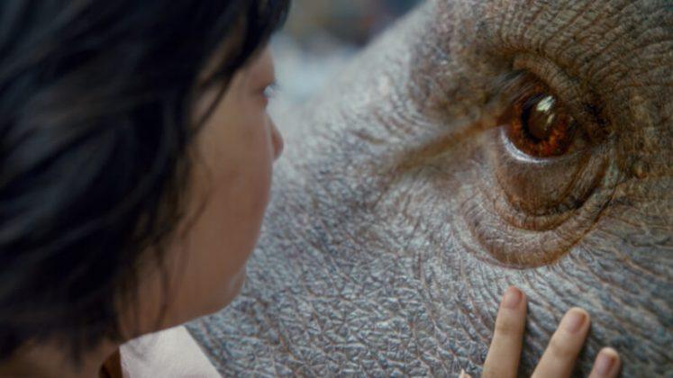 Okja. Foto: Netflix