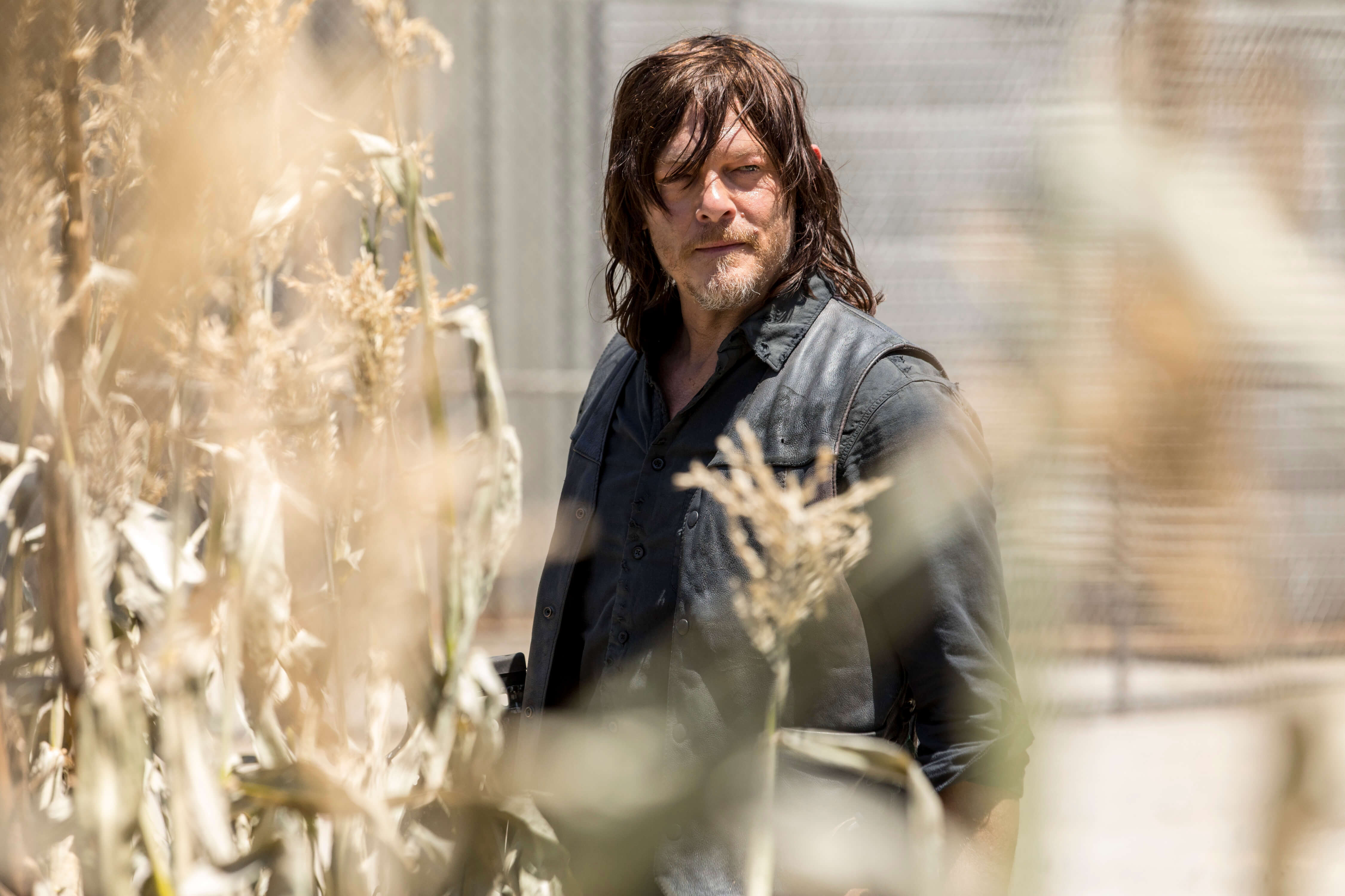 Norman Reedus overtar hovedrollen i The Walking Dead. Foto: AMC